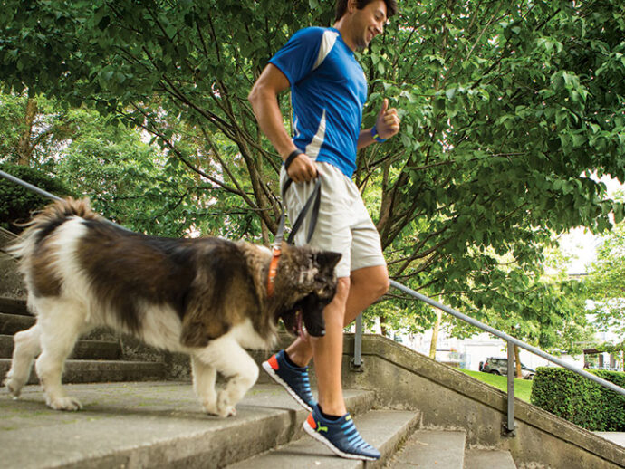 Fitness Has Gone to the Dogs
